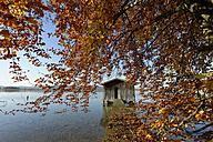 Germany, Lake Kochel, wooden boardwalk and boathouse in autumn - LBF001362