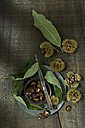Sweet chestnuts and leaves on dark wood - ASF005830