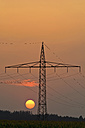 Germany, Bavaria, power pylon and evening sun - UMF000797