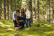 Sweden, father and three children collecting mushrooms in the forest - TSFF000011