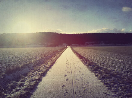 Footprints in snow on field path - LVF004507