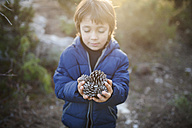 Little boy with handful of fir cones - VABF000131