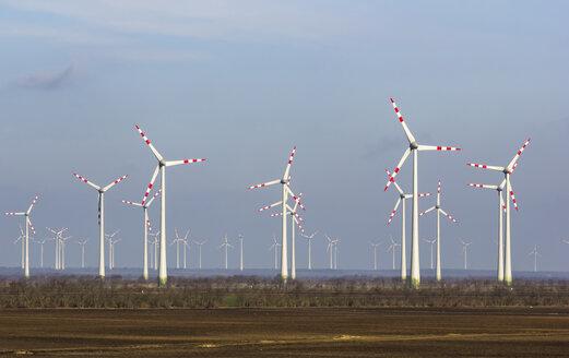 Austria, Burgenland, Andau, wind park - GSF001062