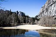 USA, California, landscape in Yosemite National Park - NGF000281