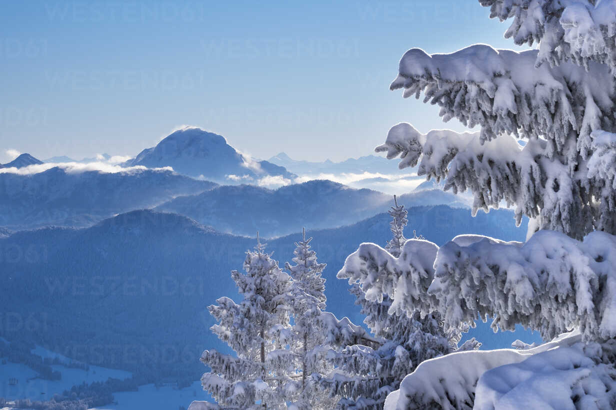 Germany, Upper Bavaria, view from Brauneck with  snow-coveres spruces to Guffert - SIEF006943 - Martin Siepmann/Westend61