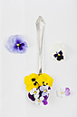 Spoon with edible pansies and violets on white ground - GWF004603