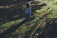Boy standing alone on meadow with autumn leaves - BOYF000094
