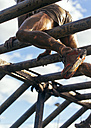 Participants in extreme obstacle race climbing on monkey bars - MGOF001400