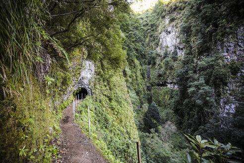 Portugal, Madeira, Levada, tunnel - REAF000050