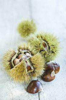 Sweet chestnuts - ASF005834