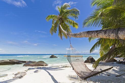 Seychelles, Silhouette Island, Beach La Passe, Presidentel Beach, palm with hammock - FOF008438