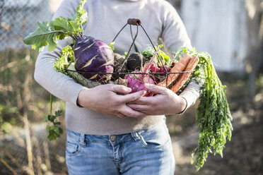 Partial view of woman holding wire basket with root vegetables - DEGF000620