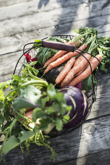 Wire basket with different root vegetables - DEGF000626