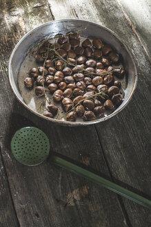 Metal bowl of roasted sweet chestnuts on wood - DEGF000649