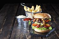 Large hamburger with fries, mayonnaise and ketchup - CSF027188