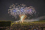 Germany, Hannover, international fireworks competition at Herrenhausen Gardens - PVCF000770