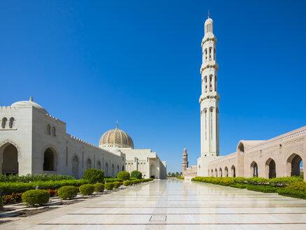 Oman, Muscat, Sultan Qaboos Grand Mosque - AM004781