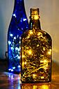 Christmas LED lights in bottles - HAWF000869