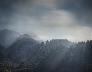 Spain, La Palma, wooded mountains at evening twilight - DWIF000696