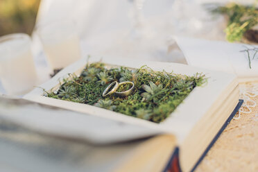 Two wedding rings lying on moss in a prepared book - MJF001726