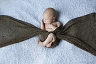 Naked newborn covered with a scarf lying on a blanket - SHKF000506
