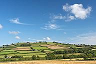 UK, Wales, Fields and meadows near Brecon - SHF001879