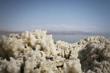 Israel, Dead Sea, salt crystals at lakeshore - REAF000059