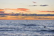 Surfer at sunrise - SKCF000069