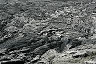 Indonesia, Java, Cemoro Lawang, Mount Bromomcrater rim - DSGF000989