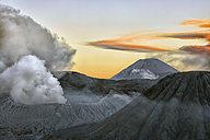 Indonesia, Java, Volcanos Bromo, Batok and Semeru in the morning - DSGF001004