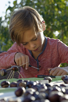 Little boy tinkering chestnut figurines - LBF001389