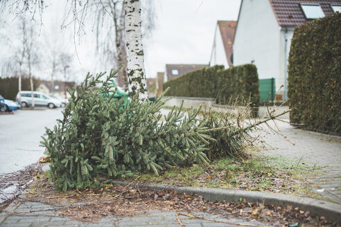 Germany, Brandenburg, christmas tree is disposed - ASCF000513