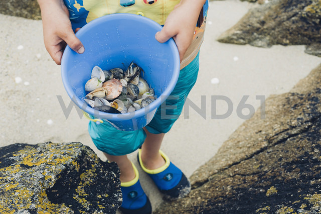 Boy holding bucket with mussels on beach - MJF001761 - Jana Mänz/Westend61