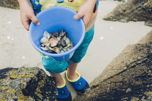 Boy holding bucket with mussels on beach - MJF001761