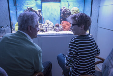 Grandfather with grandson at aquarium - PAF001551