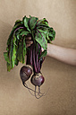Woman's hand holding bunch of beetroot - VABF000250