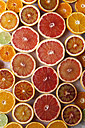 Halves of different citrus fruits - VABF000256