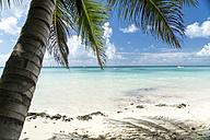 Dominican Republic, sandy beach of Bayahibe - PCF000240