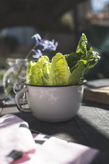 Enamel pot of leaf salad - DEGF000674