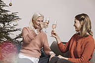 Senior woman and younger woman clinking glasses by Christmas tree - MFF002765