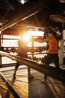 Two female boxers fighting in ring - ZEDF000073