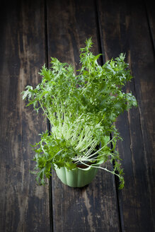 Flowerpot of wild turnip - CSF027280