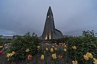 Iceland, Reykjavik, Hallgrimskirkja church - PA001634