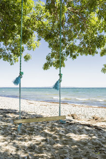 Denmark, swing hanging in a tree on the beach - OJF000121