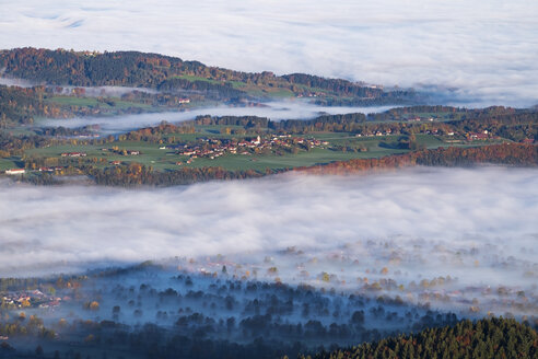 Germany, Upper Bavaria, Wackersberg, morning fog in Isar valley, View from Geierstein - SIEF006983