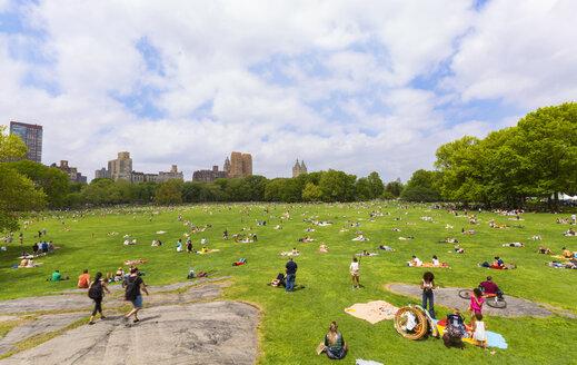 USA, New York City, Manhattan, Central Park - HSI000423