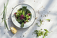Spring salad of baby spinach, herbs, arugula and lettuce on plate, lemon - DEGF000716