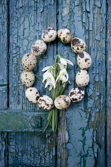 Wreath of quail eggs and snowdrops on an old wooden door - GISF000203