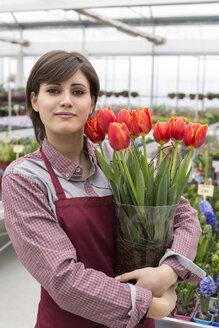 Young female gardener working in greenhouse, holding flowerpot with tulips - ALBF000050