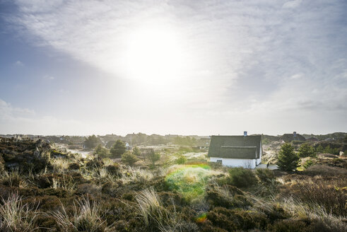 Denmark, Henne Strand, House in the grass dunes - BMA000161